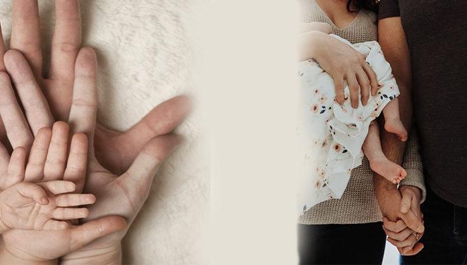 A perita do PDL quer legitimar a maternidade de substituição